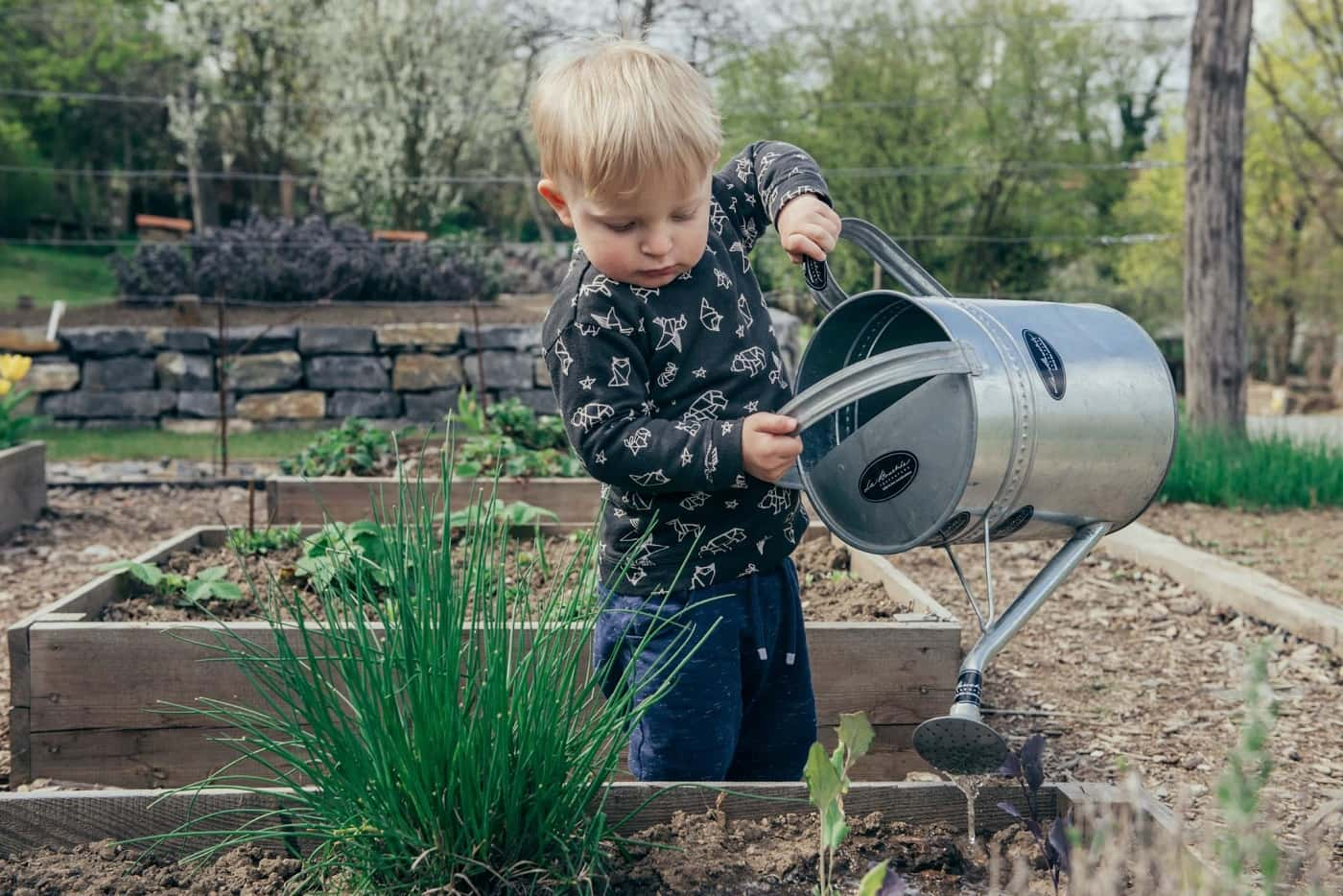 The Top 4 Outdoor DIY Projects To Do With Your Family. Watering the plants by boy with tin hand sprinkler