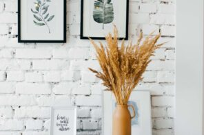 Guide to Choosing the Perfect Wall Art. Whitewashed wall with photo and plant decorations