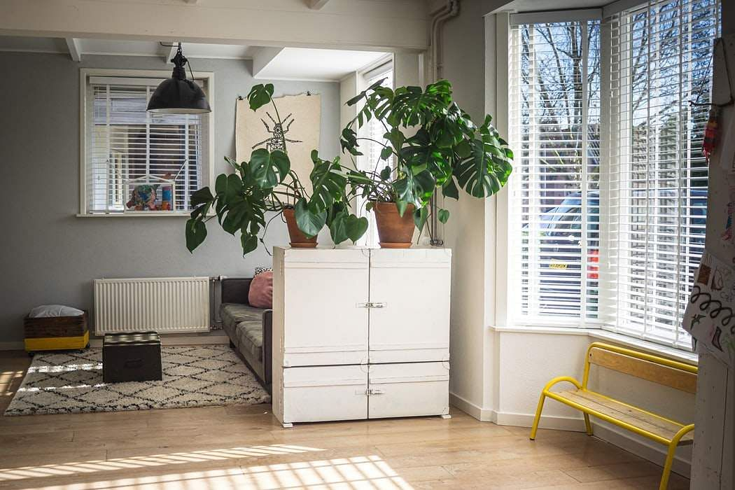 How To Upgrade Your Home Decor And Furniture While On A Budget. Simple casual decorations for spacious apartment in Feng-Shui