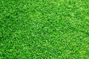 Handy Tips On How To Install And Maintain Artificial Grass In Your Yard. The green turf