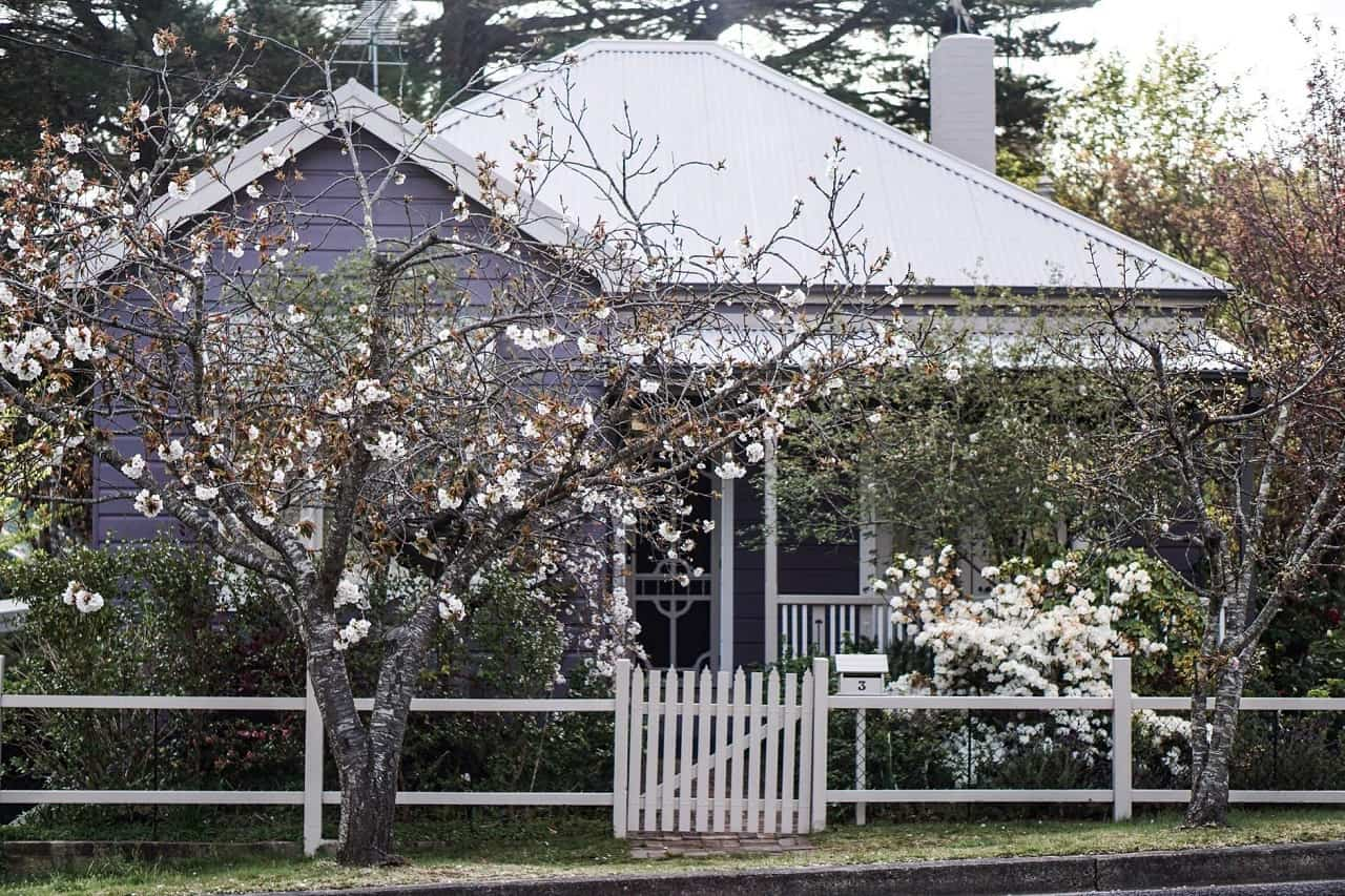 6 Benefits of Metal Roofing for Your Home. Small summer house with garden and purple siding