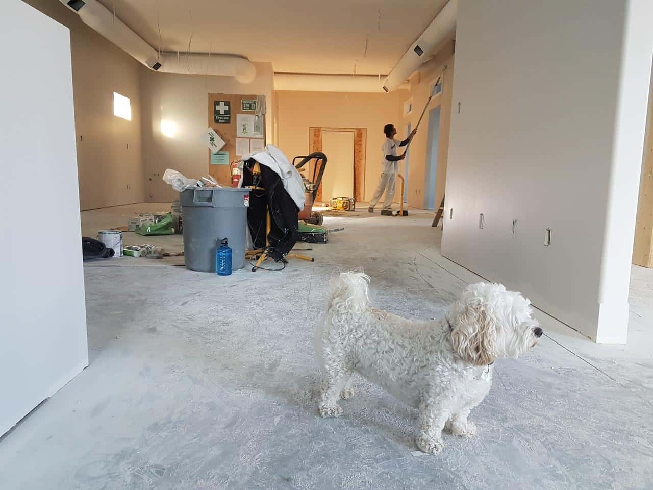 Planning To Remodel Your Home? Here's Some Important Advice. Staged apartmenr undergoing the wall painting