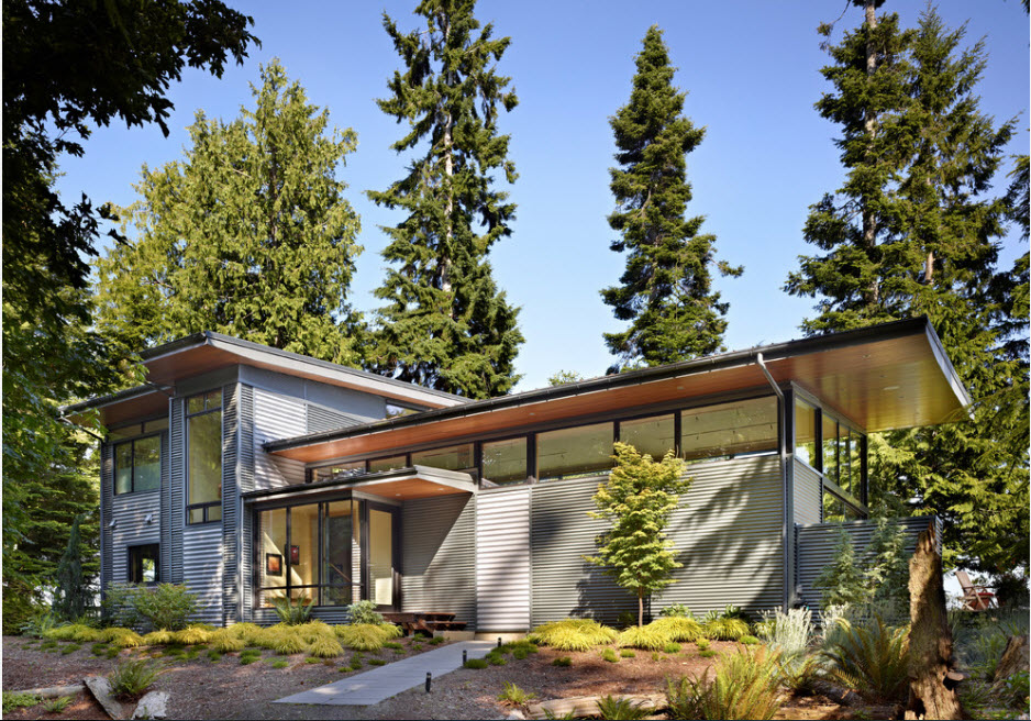 Gray siding and wooden ceilnig for countryside high-tech house