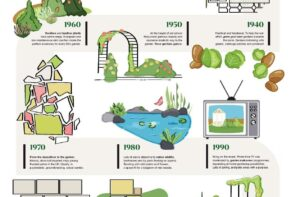 Gardens through decades with different paving infographics